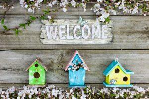 tervetuloa-uusille-verkkosivuille-mif